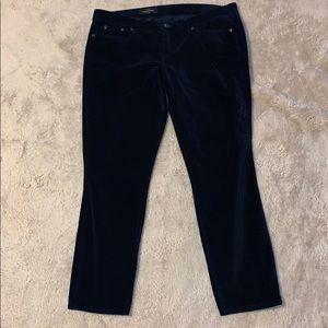 J Crew Blue Velvet Toothpick Jean Size 32